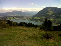 Bick auf Alpsee